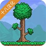 泰拉瑞亚  v1.4 汉化版