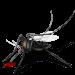 蚊子杀手  18.0.1