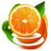 橙子视频  2.1.8