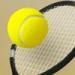 梦幻网球  1.0