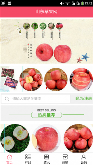 山东苹果网