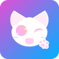 小奶猫视频